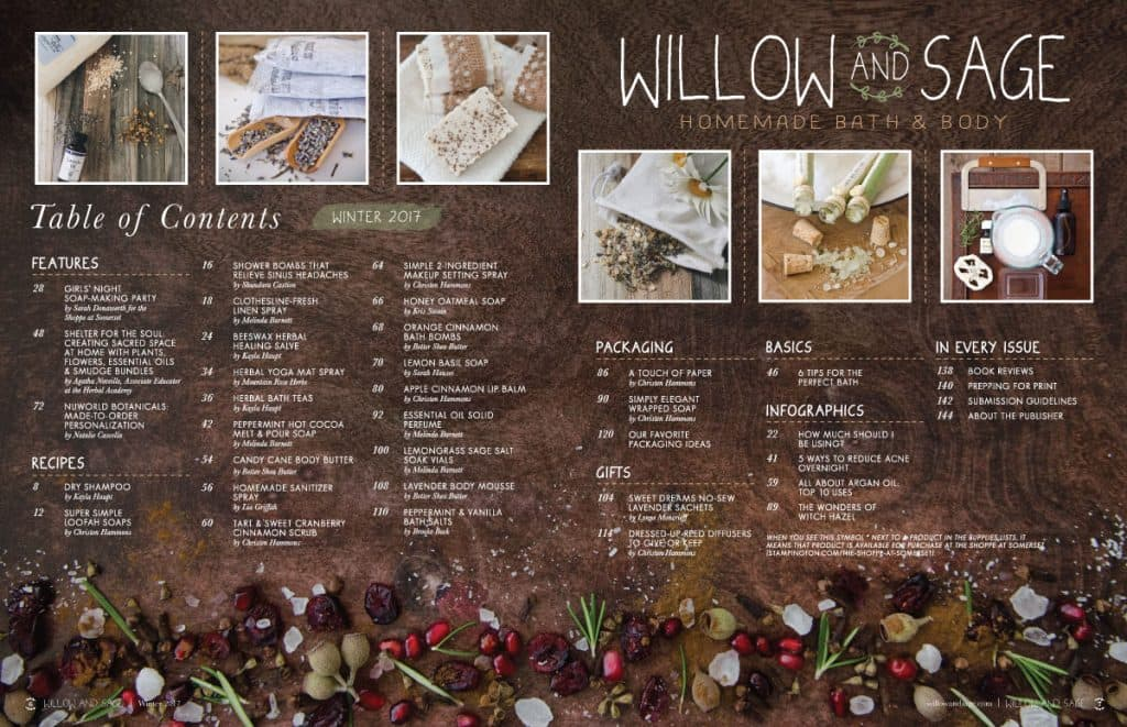 willow and sage winter 2017